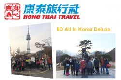 8D Korea Package Tour from Singapore