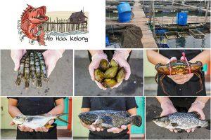 Ah Hua Kelong Seafood Delivery Singapore