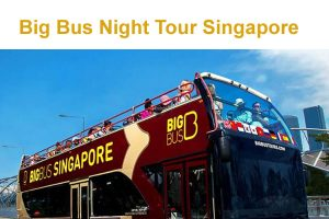 Big Bus Night Tour Singapore
