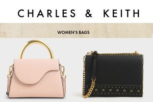 Charles and Keith Womens Bag
