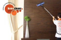 HomeCleanz Singapore