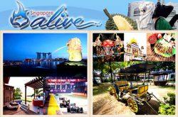 Singapore Alive Pte Ltd