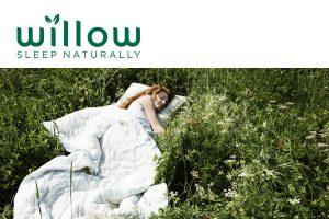 Willow Mattress Singapore