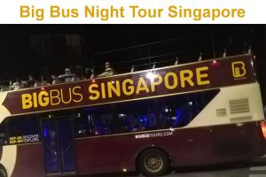 Big Bus Singapore Night Tour